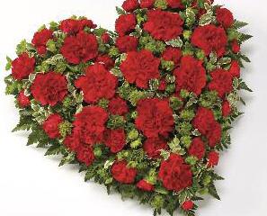 Hearts Carnation - £70
