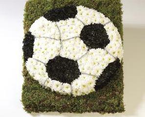 Tributes Football - £150